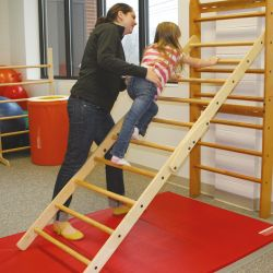 In-FUN-ity Ladder Climbing Wall