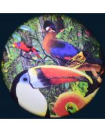Tropical Birds Solar Effect Wheel